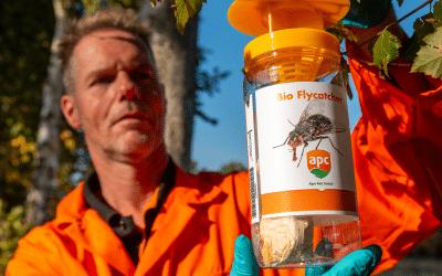 Präventive Fliegenbekämpfung